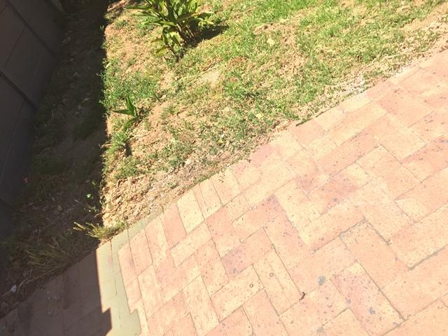 Property For Rent in Stellenbosch Central, Stellenbosch 16